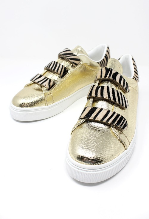 Shoe Lounge Gold Trainer with Zebra Velcro Straps