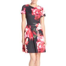 Donna Ricco Floral Scuba Fit & Flare Dress