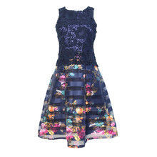 Zapara Navy Floral Stripe Dress