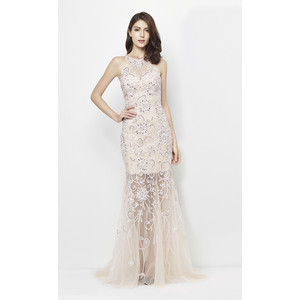 Lore Pink & Nudes Floral Mesh Pattern Long Dress
