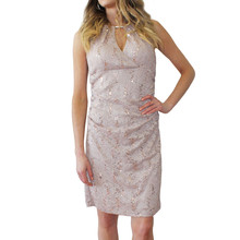 Scarlett Taupe Silver Sequence Diamante Detail Dress