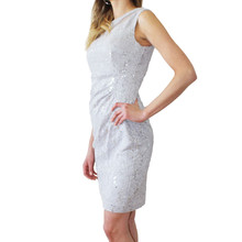 Scarlett Silver Mesh Sleeveless Pulled Dress