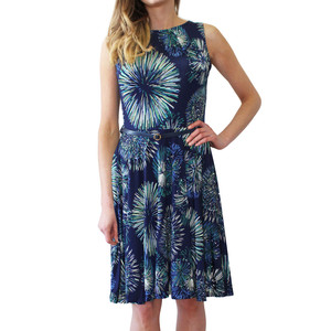 Zapara Navy & Green Spiral Swing Dress