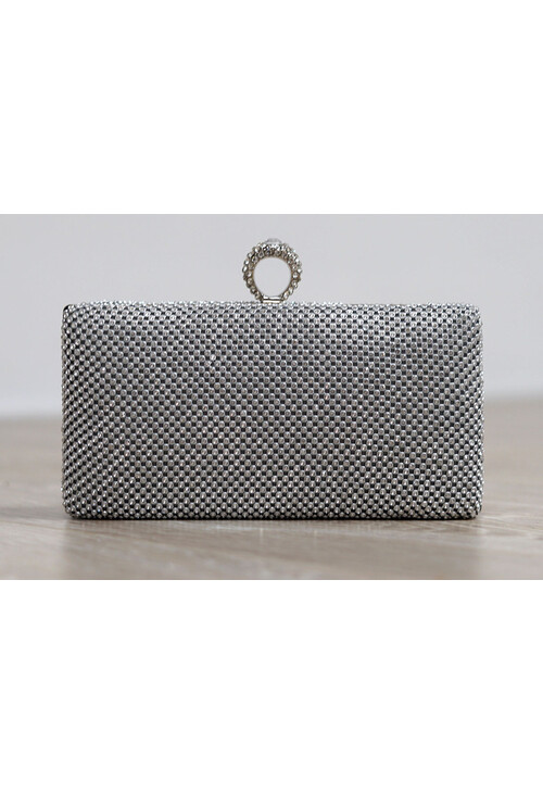 Pamela Scott Silver Chain Mail Clutch