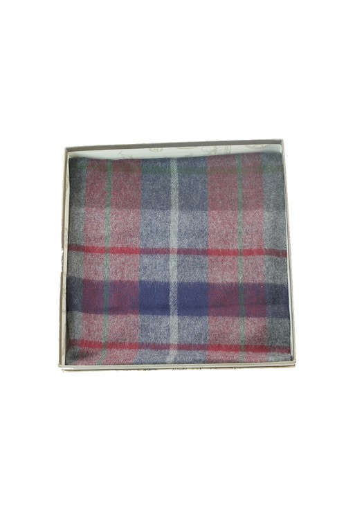 Something Special Mens Red and Blue Checked Scarf
