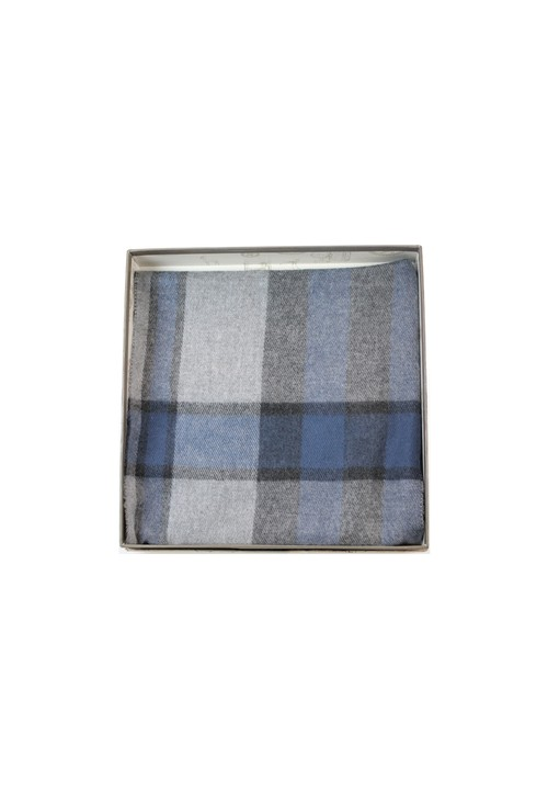 Something Special Mens Blue Check Scarf