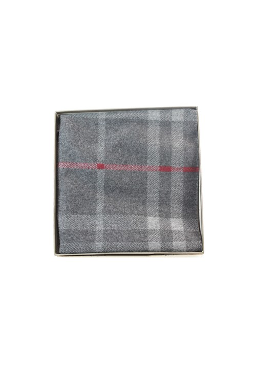 Something Special Mens Grey Checked Scarf