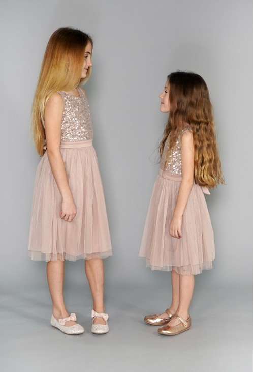 Maya Blush Mini Maya Dress