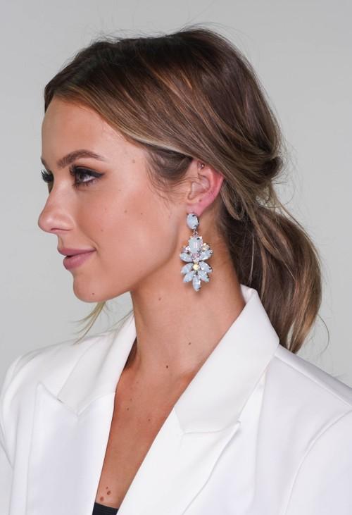 Pamela Scott diamante earrings in silver frost